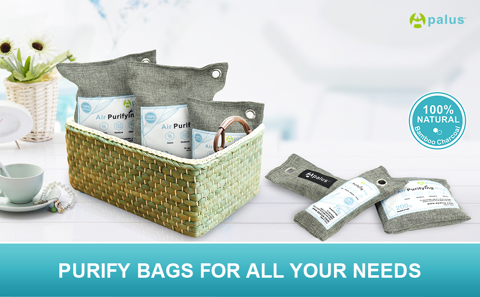 air purifiying bags refresher